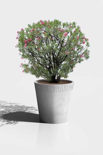 51-jardiniere-asturias-ronde-vegetal-gris1-353x530
